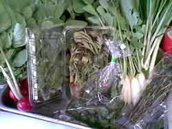 群馬県産の天然山菜たち
