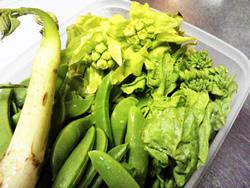 2012年春野菜!